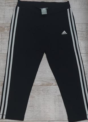 Оригинальные лосины adidas