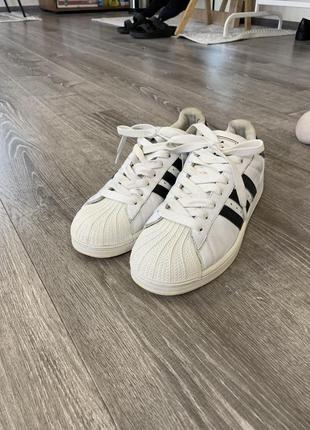 Adidas superstar {original}
