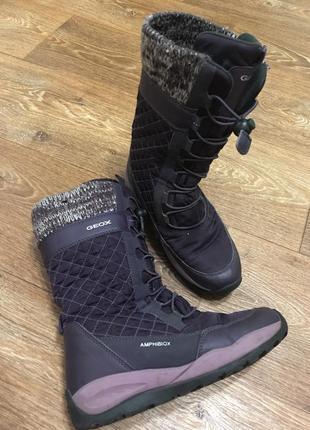 Сапоги сапожки ботинки geox 36