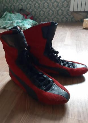 Боксерки, спортивная обувь
