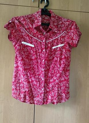 Продам блузку calliope