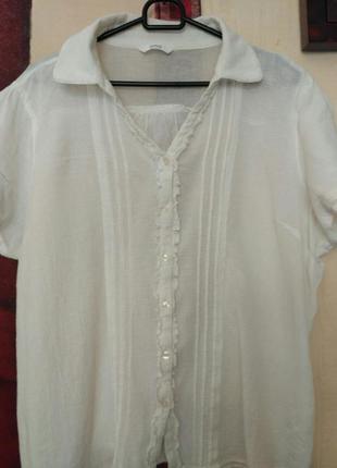 Белая блуза большого размера(22)