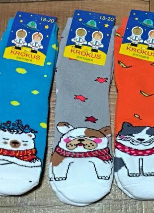 Носки махровые детские шкарпетки 18-20р