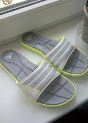 Шлепанцы  adidas original.