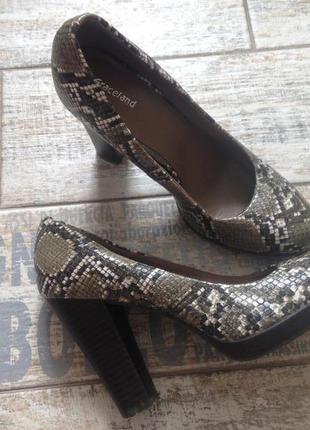 #туфли на высоком каблуке#туфли