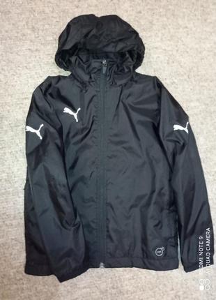 Куртка ветровка дождевик puma-7-8л.