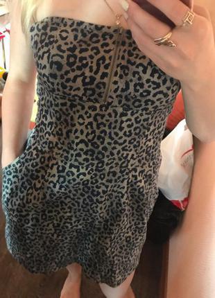 Продам платье terranova