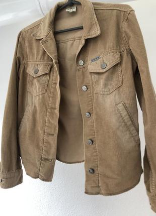 Оригинальный крутой пиджак , вельветовая бежевая джинсовка,  оригинал calvin klein
