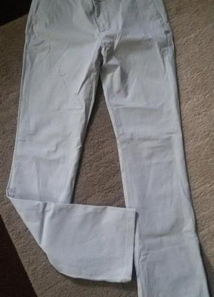 Класичні штани кольору слонова кисть