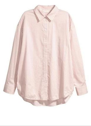 H&m белая рубашка в розовую полоску, рубашка в полоску, сорочка, блузка