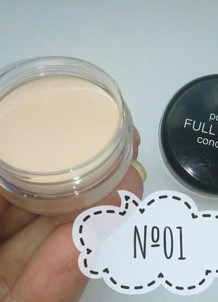 Тон 01 консилер корректор кремовый для макияжа probeauty