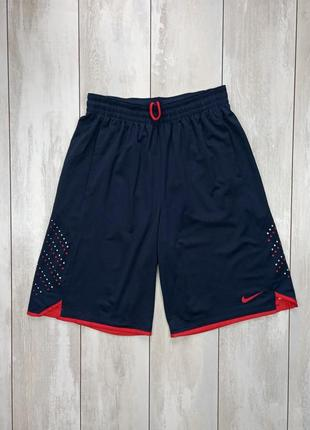 Баскетбольные шорты nike lebron
