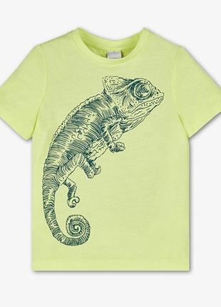 Акция. светло-салатовая футболка с ящерицей palomino c&a, 100% хлопок
