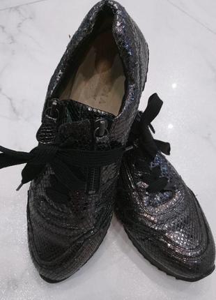 Кожаные кроссовки hassia, австрия, оригинал