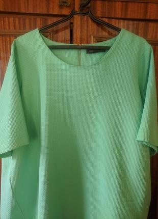 Блузка+ брюки.р.20-22