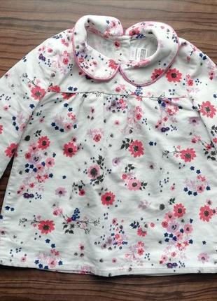 Блуза микровельвет