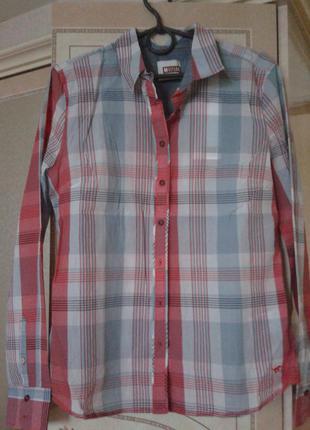 Рубашка в клетку оригинал мustang