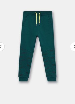 Крутые джоггеры,спортивные штаны