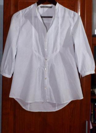 Блуза белого цвета в тоненькую бледно-голубую полоску бренда zara