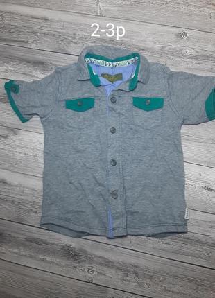 Рубашки бодики футболки на малчика