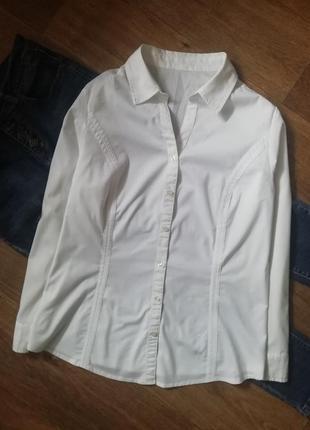 Белая рубашка, блузка, сорочка