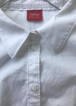 Рубашка esprit, s,