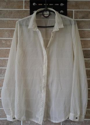 Рубашка блуза colin's