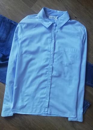 Голубая рубашка, сорочка, блузка, базовая рубашка, офисная