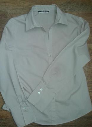 Сорочка сіро-бежева