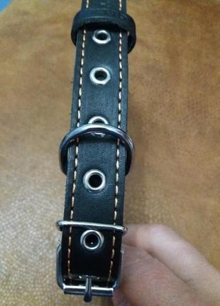 Кожаный ошейник для собаки collar.