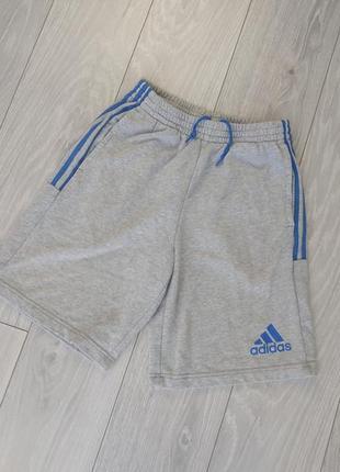 Сірі шорти adidas розмір м