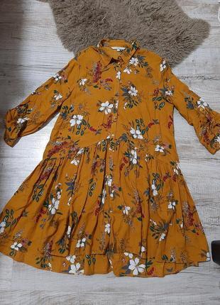 Ckh плаття
