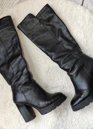 Высокие сапоги зимние, демисезонные на квадратном каблуке от roberto netti