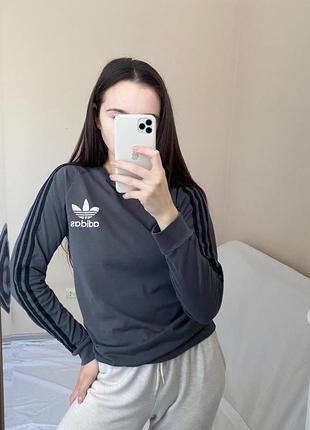 Лонгслив adidas p.s/m
