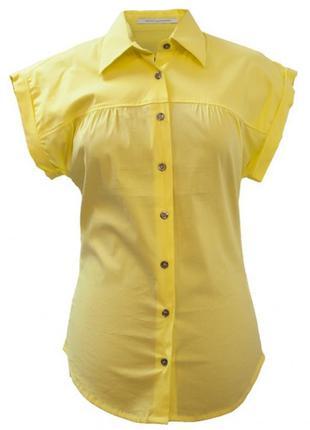 Блузка рубашка летняя блуза