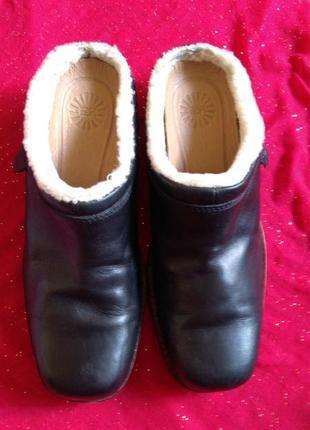 Женские ,кожаные тапочки,фирма ugg