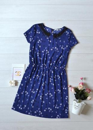 Чудове плаття в ласточки new look