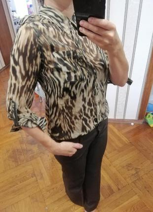 Красивая блузка в офис