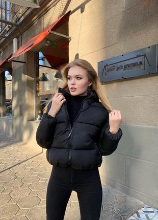 Шикарная женская куртка осень\зима