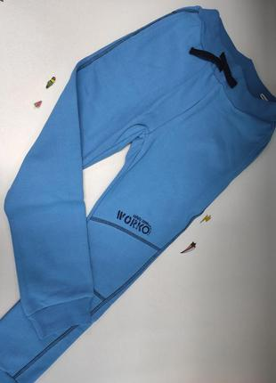 Спортивные штаны, теплые, на флисе