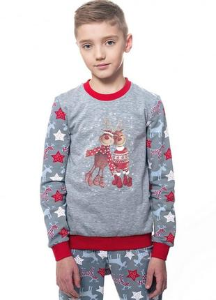 Детская пижама для мальчика утепленная ellen 016/002. серия family look.