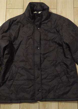 Куртка на синтепоне vincelli