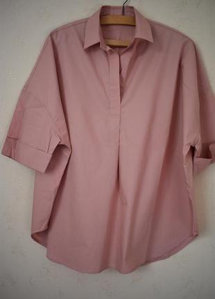 Стильная блуза большого размера