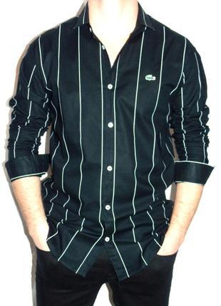 Lacoste шикарная брендовая рубашка - xl - l