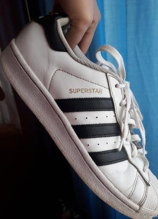 Белые кроссовки adidas superstar