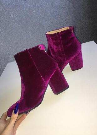 Бархатные ботинки dorothy perkins