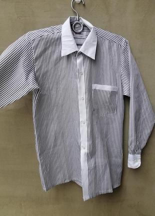 Рубашка сорочка блуза блузка