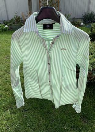 Рубашка polo в полоску зелёная