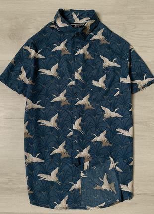Яскрава чоловіча сорочка від cedar wood state
