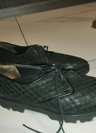 Туфлі броги paul green